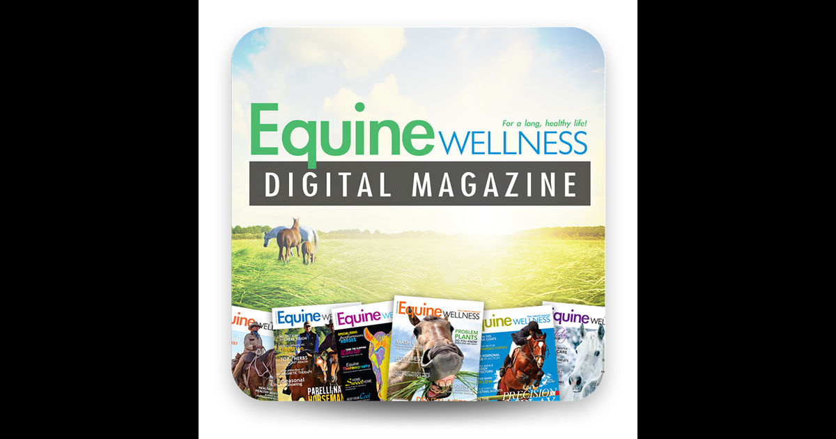 Free Issue Of Equine Wellness Magazine Either By Mail Or Digital